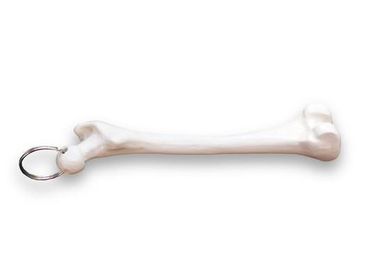 Schlüsselanhänger Mini-Femur (Oberschenkel)
