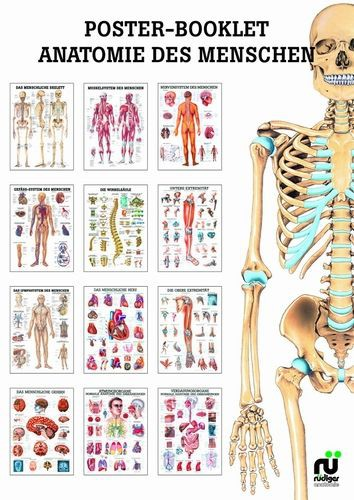 Miniposter - Booklet 01 Anatomie