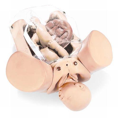 Geburtssimulator