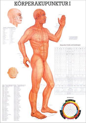 Körperakupunktur I